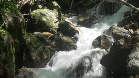 Creek Flowing Over Rocks Live Action