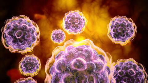 Microscopic visualization of poliovirus Animation