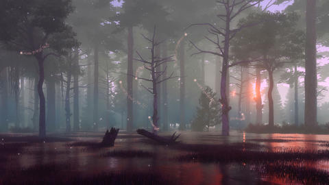 Mystic firefly lights in dark swampy night forest Cinemagraph Animation