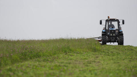 Blue tractor standing on grass field at farm under gray sky Live Action