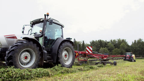 White tractor picks up cutted grass at farm margin near forest Live Action