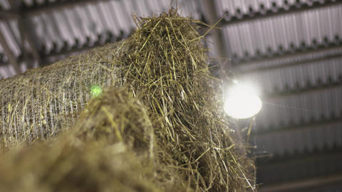 Haystacks lie at farm side by side in rolls under lamplight Live Action