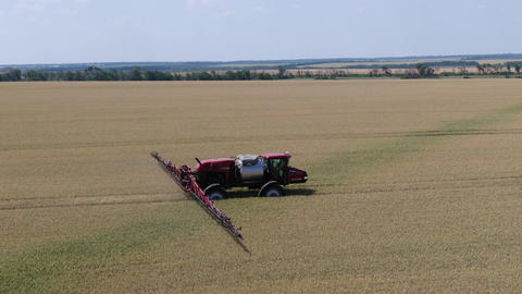 Very fast self propelled sprayer is watering the wheat on a field Live Action