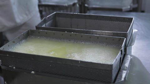 Factory curd making process. Man worker separates milk whey from curd at factory Live Action
