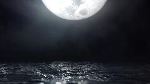 Moonlight Reflection on Water Waves Seascape Loop GIF