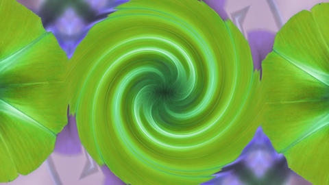 morning glory deformation rotation swirl pattern in lush... Stock Video Footage
