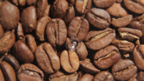 Coffee Grinder Time Lapse stock footage