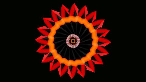 abtract sun flower Stock Video Footage