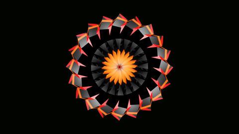 abtract sun flower Animation