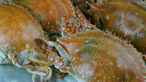 Delicious crab within dial plate.fisheries Stock Video Footage