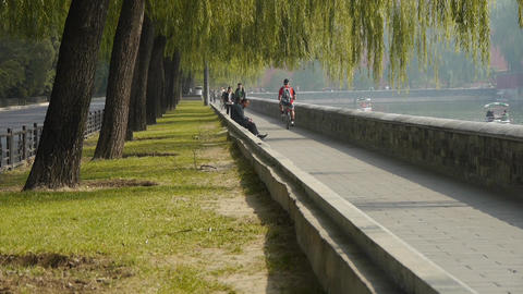 A man riding bicycle relying on willow river.yacht on... Stock Video Footage