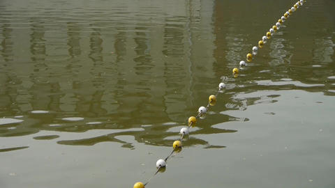 floats on lake.Water surface.sea ocean Footage