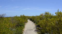 Cape Naturaliste Scenic Path Footage