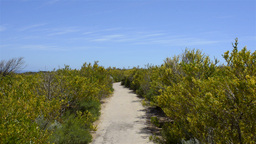 Cape Naturaliste Scenic Path Stock Video Footage