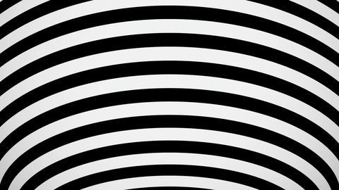 20 HD Reflective Stripe #01