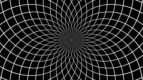 net hypnotize Animation