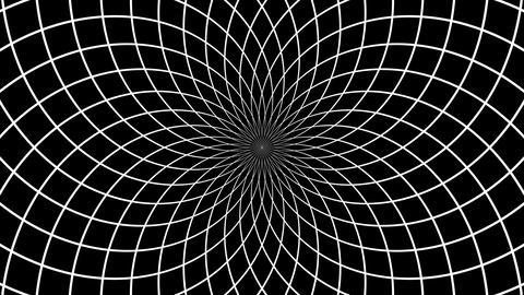 net hypnotize Animation