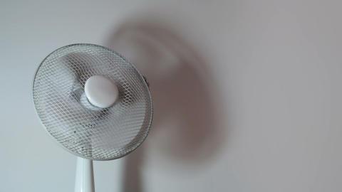 Office equipment - Electric Fan (loop) Stock Video Footage