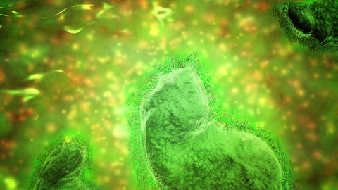 Microscopic visualization of respiratory syncytial virus Animation