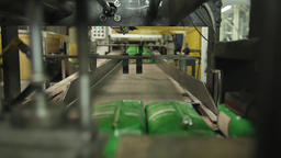rice packaging production line conveyer belt Footage