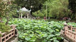 Lou Lim Lok garden in macau Suzhou style garden Live Action