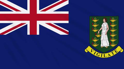 British Virgin Islands flag waving cloth, loop Animation
