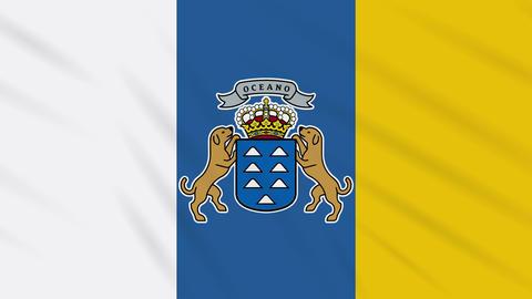 Canary Islands flag waving cloth background, loop Animation