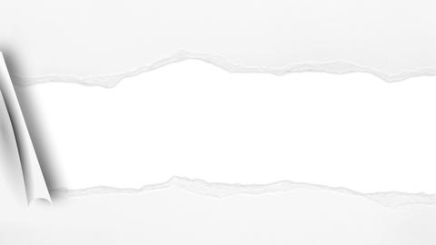 White Ripping Torn Paper Background Animation