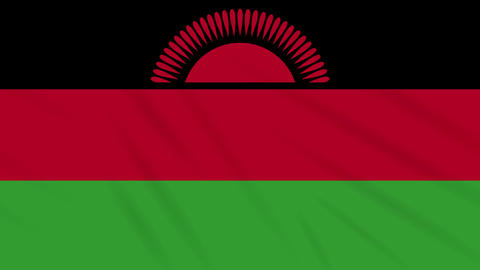 Malawi flag waving cloth background, loop Animation