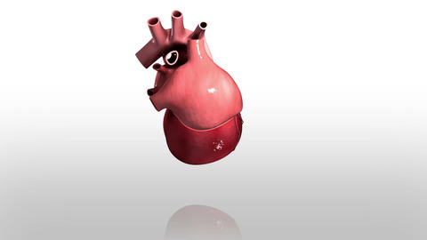 Human Heart Medical Animations 0