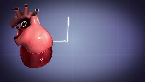 Human Heart Medical Animations 1
