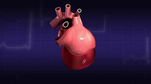 Human Heart Medical Animations 2