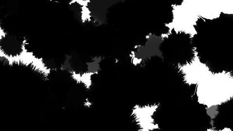paint bleeding _ black_ white background CG動画