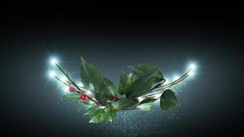 christmas wreath 2 _ black background CG動画