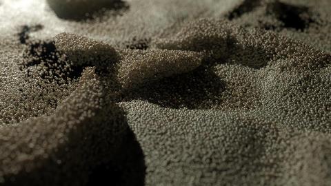 Caviar Background Photo