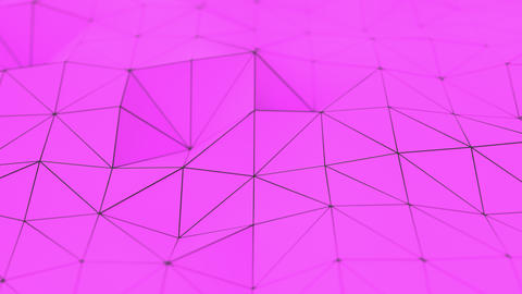 0978 Purple low poly displaced surface with black lines Animation