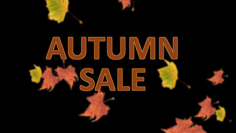 Autumn sale banner against blurred background. Seasonal promotion banner Animation