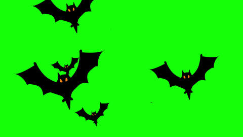 Swarm of bats flying against green background. 4k Animation