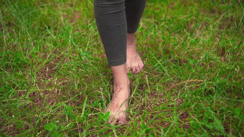 Female bare legs on the grass. Walking barefoot on the grass, the concept of Live Action