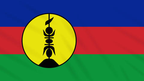 New Caledonia flag waving cloth background, loop Animation