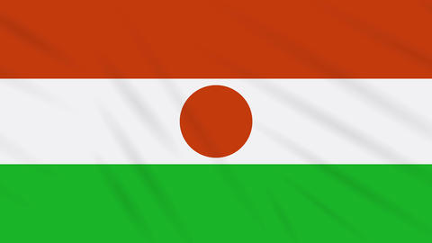 Niger flag waving cloth background, loop Animation