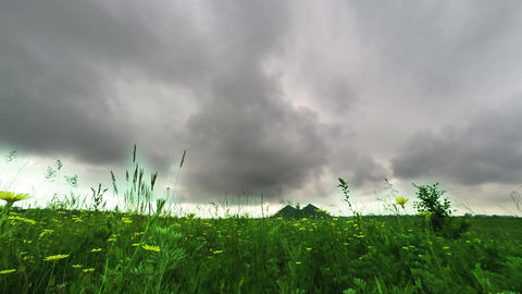 Flower meadow and dark clouds Donbass Footage