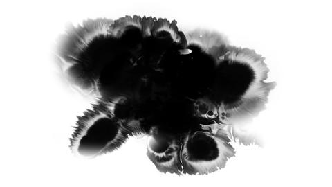 A drop of black ink spreads over the surface of the white background HD Footage