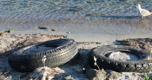 Abandoned Car Tires On The Beach Live Action