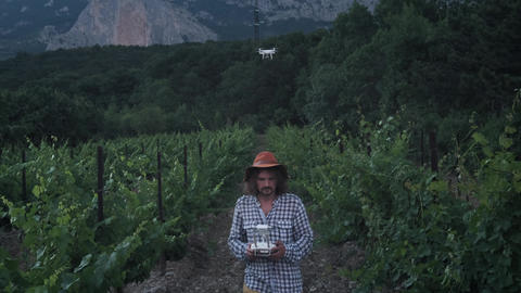 A male farmer uses a drone for farming. Monitors its grape fields. New Footage