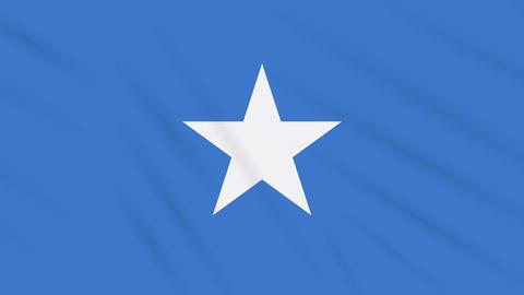 Somalia flag waving cloth, background loop Animation