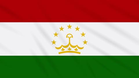 Tajikistan flag waving cloth, background loop Animation