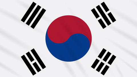 South Korea flag waving cloth, background loop Animation