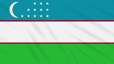 Uzbekistan flag waving cloth, background loop Animation