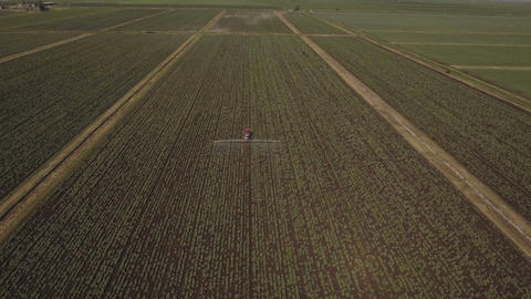 Tractor is spraying fertilizers potato field.Aerial video Live Action